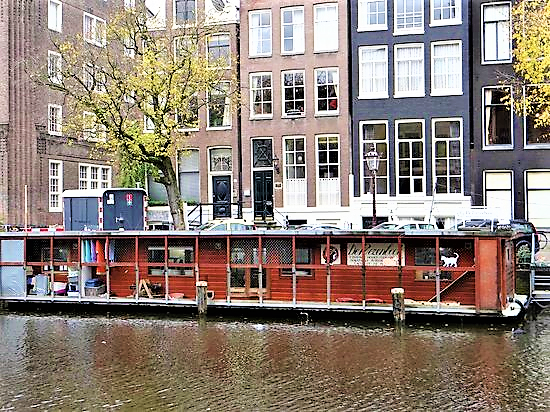 Cat Boat Amsterdam | Things to do in Amsterdam