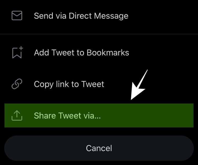 Pilih Share Tweet Via untuk Mengunduh Video Lewat Shortcut