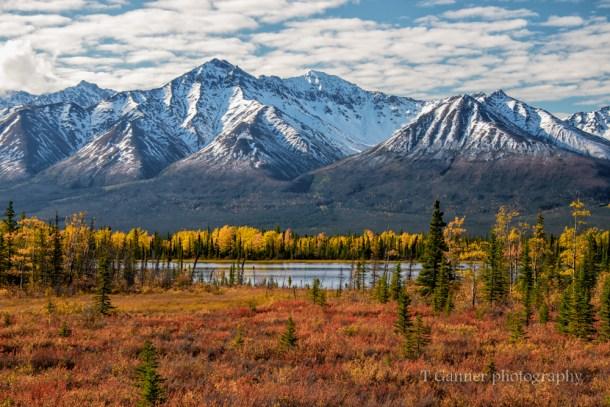 Alaska, autumn, Alaska autumn, foliage, Alaskan Highway, Alcan Highway, Kluane, Yukon