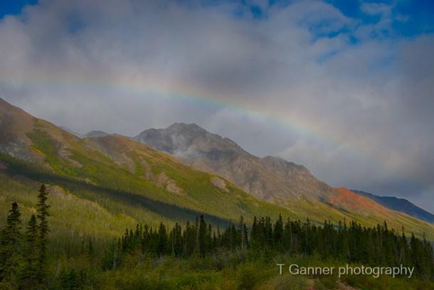 Alcan, Alaska Highway, Rainbow, Haines Junction, Yukon Territory, Kluane