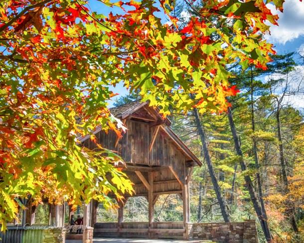 North Carolina, Brevard, Connestee Falls, autumn, foliage, waterfall, Dupont State Forest, covered bridge, North Carolina Autumn