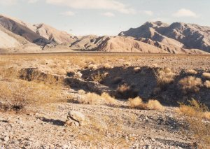 Saline Valley, Saline Chronicles