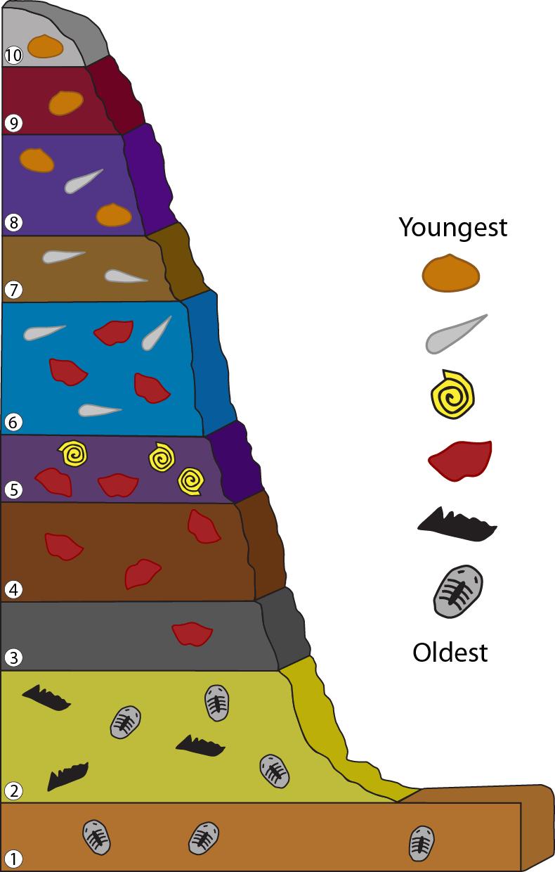 Horizontality definition original Geology Test