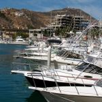 The Marina – Explore Cabo San Lucas