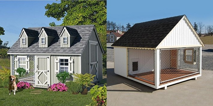 Cool dog house for dogs