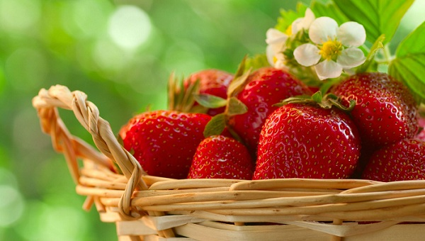 Strawberry - Fruits to Eat Daily