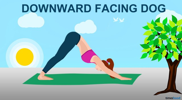 Downward Facing Dog Pose - Yoga for Neck & Back Pain