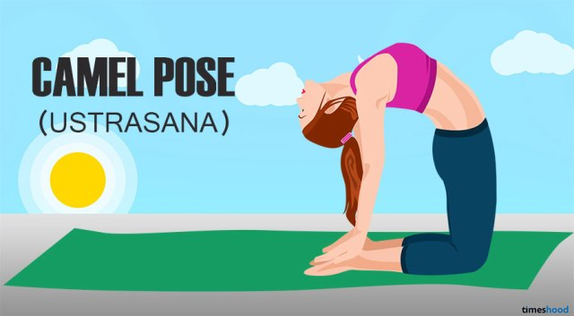 Camel Pose for Belly fat. How to loss belly fat fast. Yoga poses for belly fat.