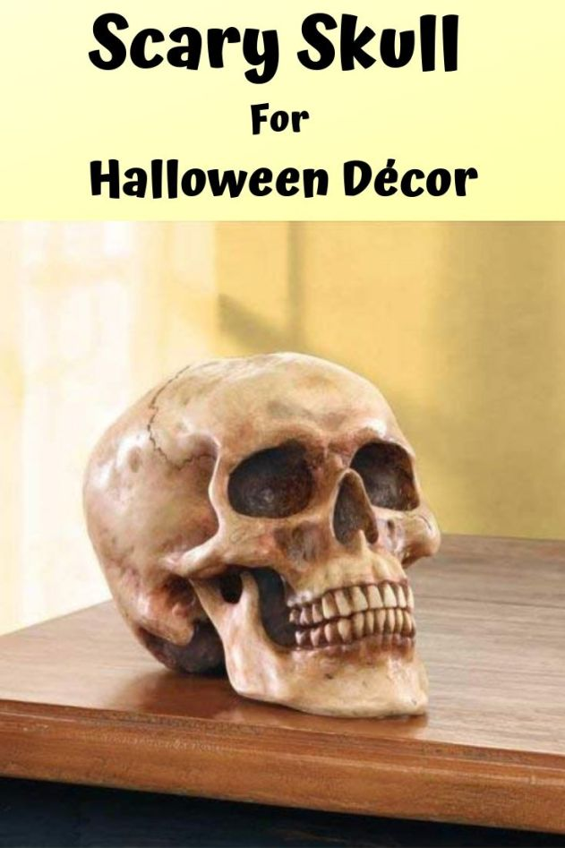 Daring decorator's delight - A Scary human skull to decorate Halloween party night. Find 17 more best reviewed haunted Halloween decoration idea on Amazon.