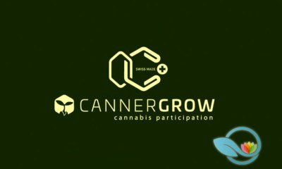 Cannergrow: Is Cannerald a Legit Medical Cannabis Research and Production Company?