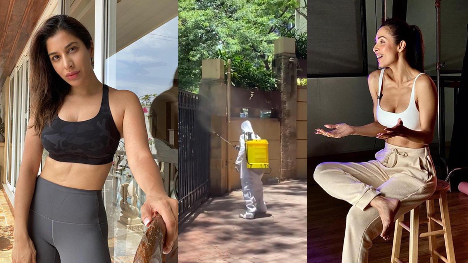 Malaika Arora, Sophie Choudry's residential constructing will get 'sanitised,