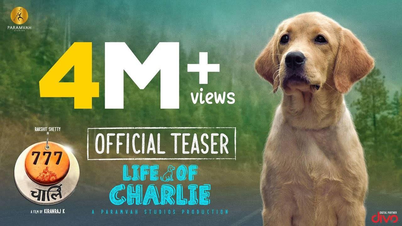 777 Charlie – Official Hindi Teaser   Hindi Movie News – Bollywood – Times of India