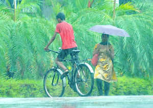 The premonsoon showers in Kerala on May 31, 2013 indicated that the monsoon is not far away from the state. (TOI photo by Jipson Sikhera)
