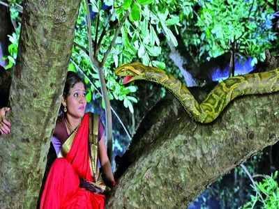 Image result for puttagowri maduve with snake