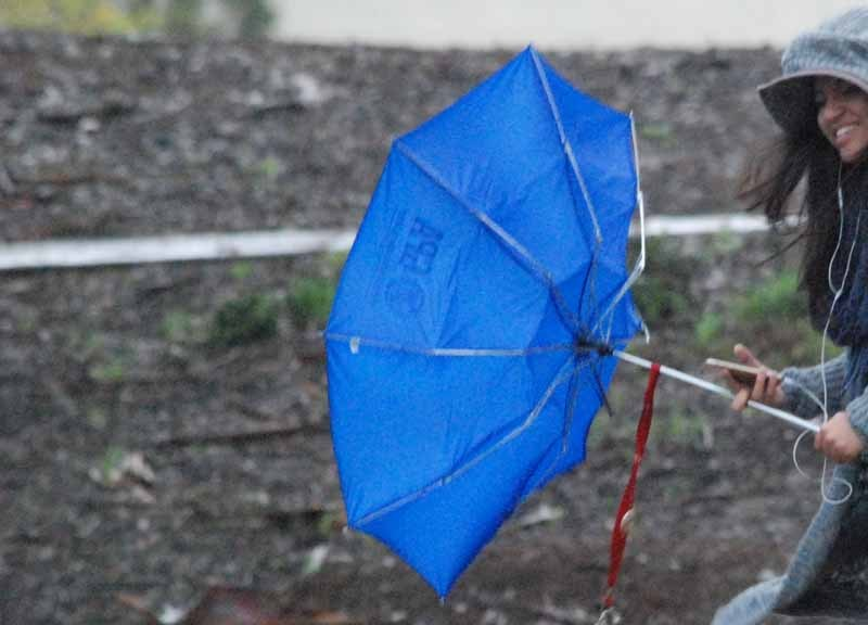 Rain and wind at UCSD
