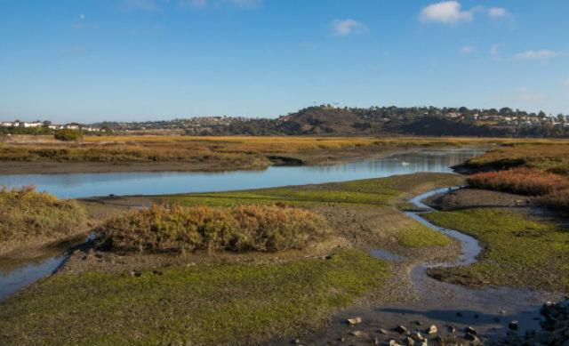 San Elijo Lagoon