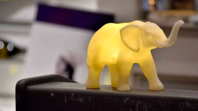 A lit-up elephant graced the lectern at the Navajo Republican Women Federated meeting at the La Mesa Brigantine.