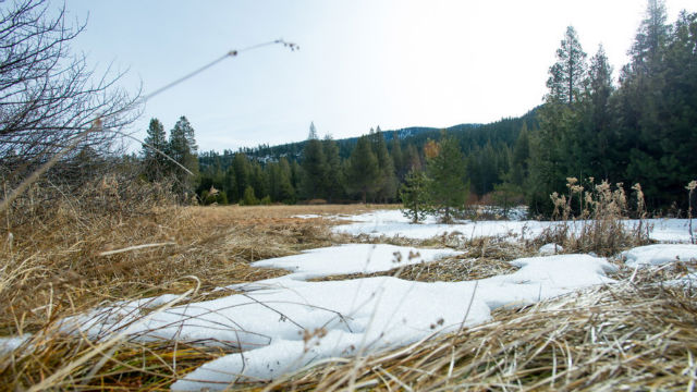 Minimal snow at Phillips Station meadow