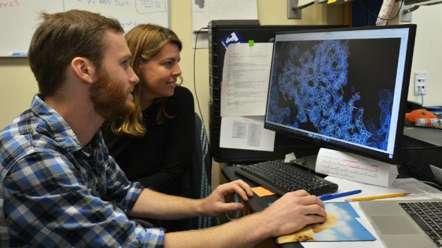 Scripps researchers