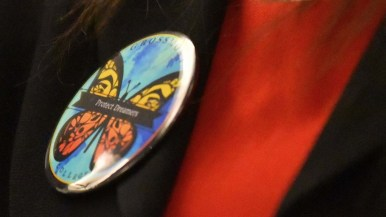 """Dulce Garcia, a plaintoff in DACA suit, wears a """"Protect Dreamers"""" button at forum"""
