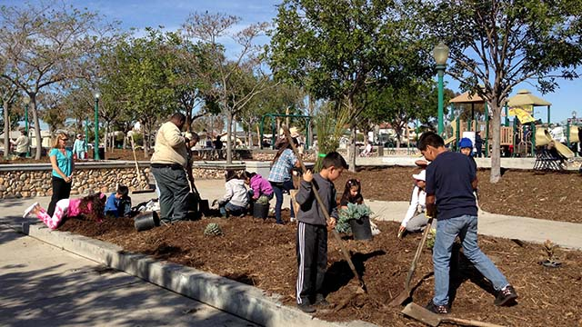 Residents improve Teralta Park landscaping in 2013.