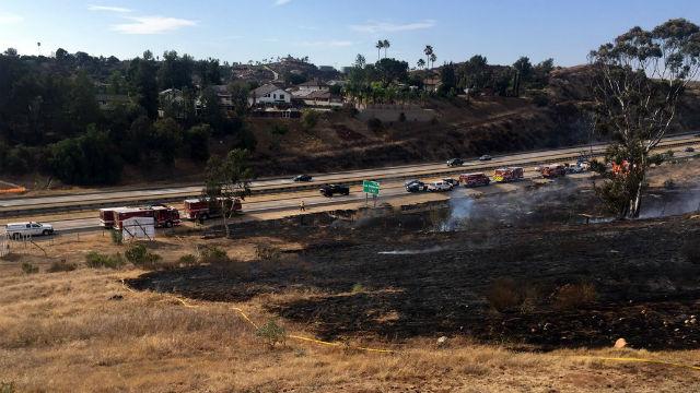 Burned area along Interstate 8
