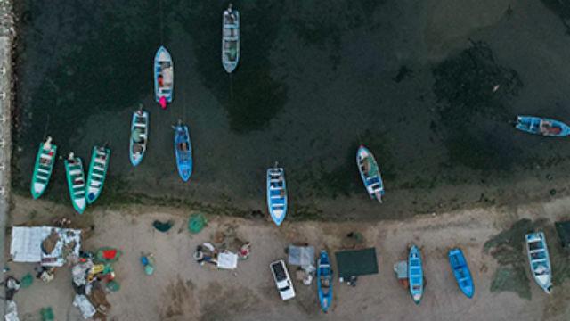 Fishing boats in the Gulf of California