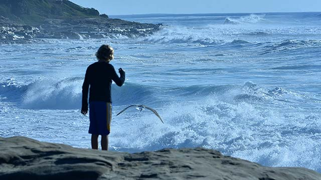 A boy watches the high surf near the Marine Street Shorebreak in La Jolla.