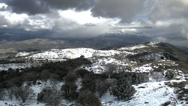 Snow accumulation on Palomar Mountain on Monday afternoon