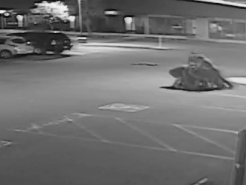 Grantville Police Beating, Jonathan Felix
