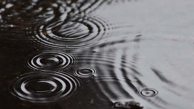 Rain fell steadily in San Diego throughout the day.