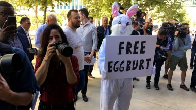 About 20 protesters including someone in a bunny suit await appearance of Rep. Duncan D. Hunter and his father, the former congressman, after court hearing.