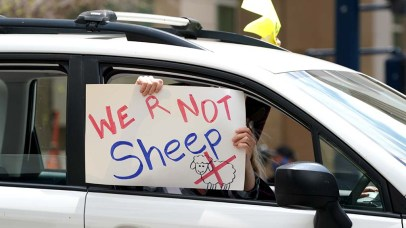 """Handmade signs were shown to fellow """"freedom rally"""" demonstrators downtown."""