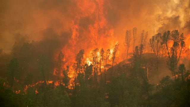 Flames engulf a ridge line near Aetna Springs