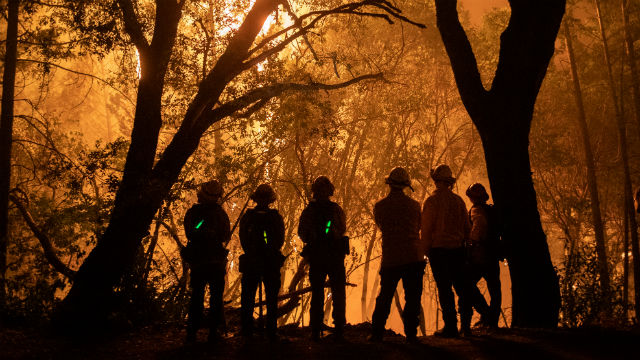 Firefighters on the line in Calistoga