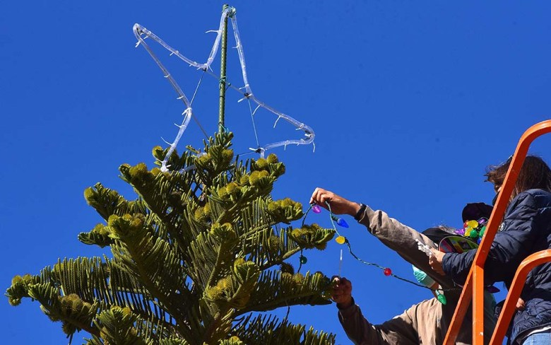 Once workers placed the star on top, they began to unravel the strings of lights on the Ocean Beach Christmas tree.