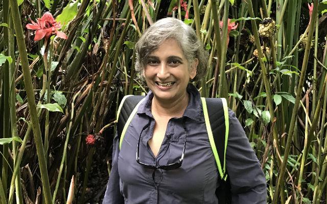 Vibha Bhatnagar
