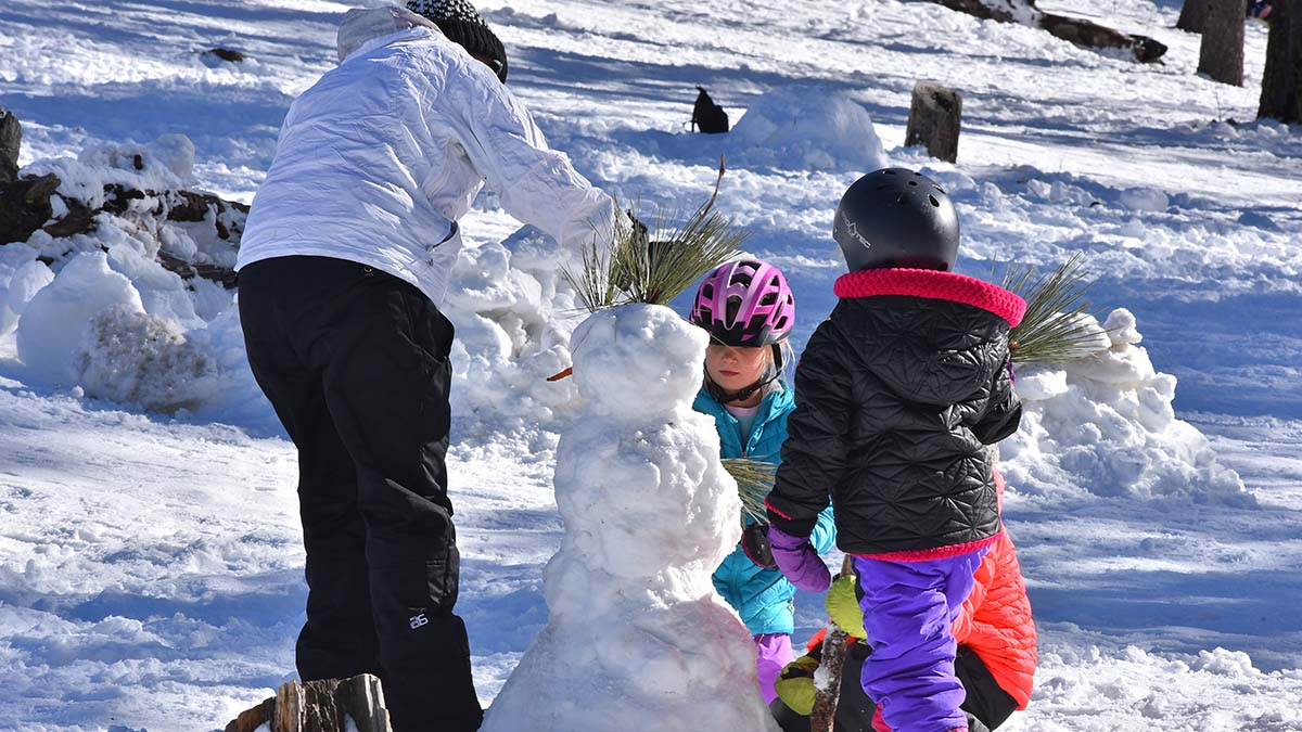 Several snow people were built and adorned with pine branches, pine cones and carrots, of course.