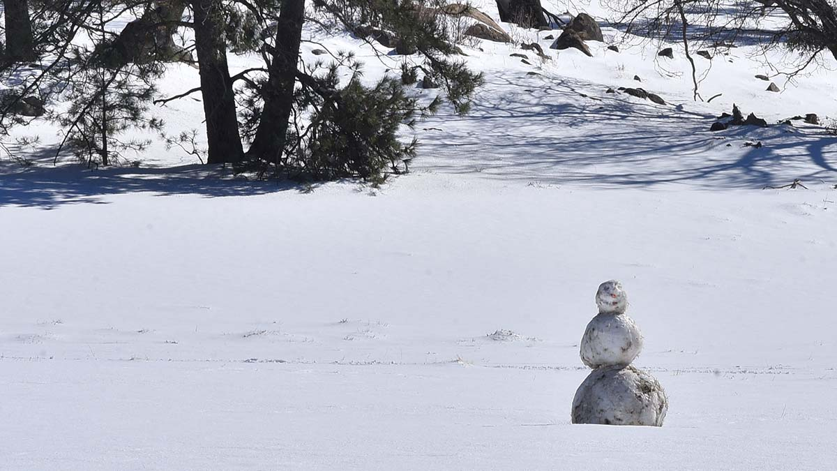 A lone snow person sits in a snowy field along Sunrise Highway.