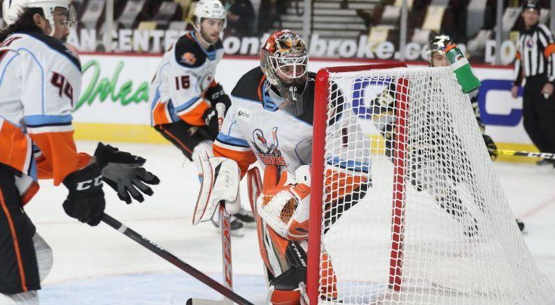 AHL Minor League Hockey