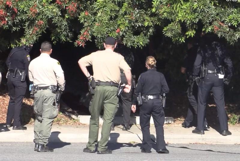 Sheriffs Spring Valley Search