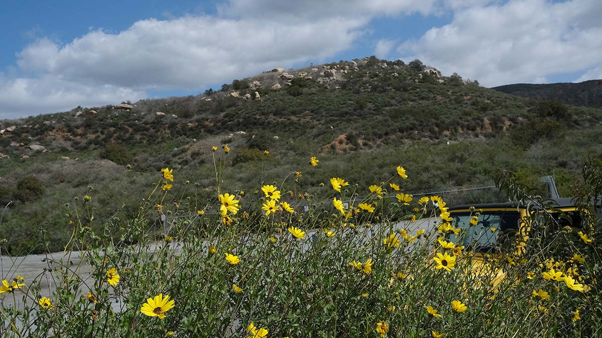 Opened in 1974, Mission Trails Regional Park has become one of the largest urban parks in the United States.