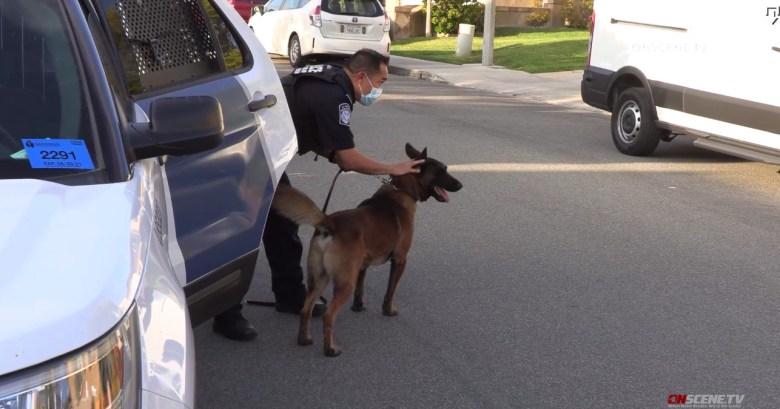 Chula Vista police Missing woman