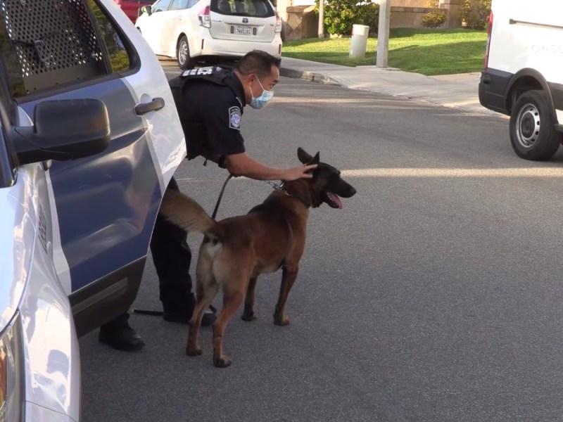 Chula Vista police Missing