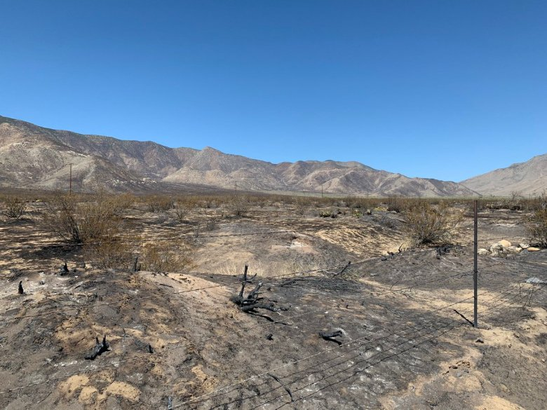 Area charred by Southern Fire
