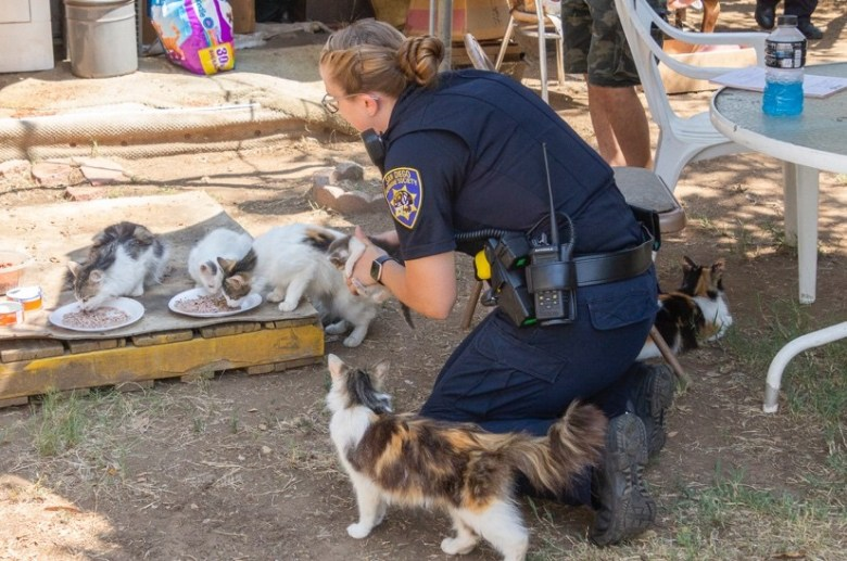 Officer with cats