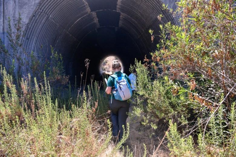 Wildlife underpass