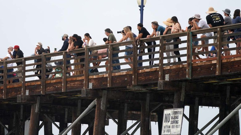 Surfing fans lined the Oceanside Pier to watch the action. Photo by Chris Stone