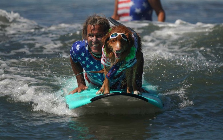 Kai, a Nova Scotia Duck Tolling Retriever, hangs ten with a handler in the Surf Dog Surf-a-thon in Del Mar. Photo by Chris Stone