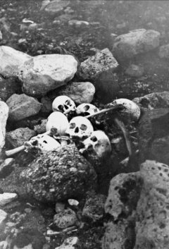 Remains of the Franklin Party, King Williams Island, 1945